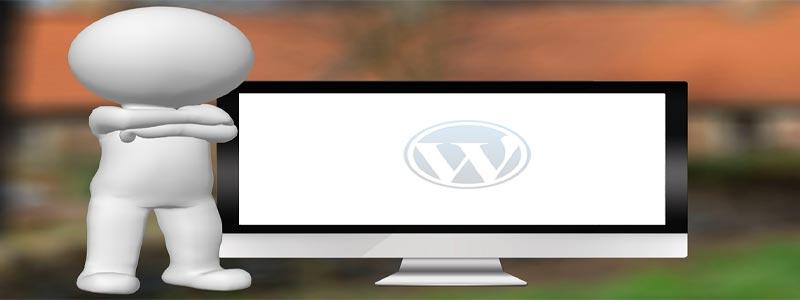 テーマを変えたらワードプレスが真っ白になって何も表示されなくなった時の対処方法