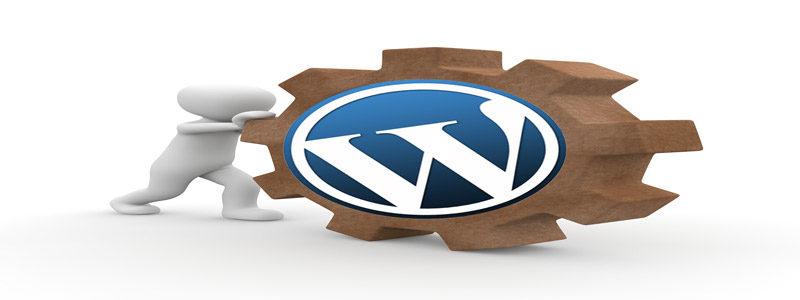 logo-function